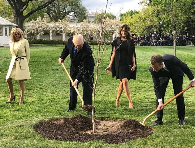 U.S. President Donald Trump and French President Emmanuel Macron shovel dirt onto a freshly planted oak...