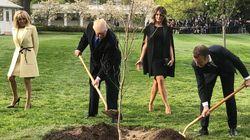 C'è un motivo se Trump ha fatto sparire dalla Casa Bianca l'albero che Macron gli ha