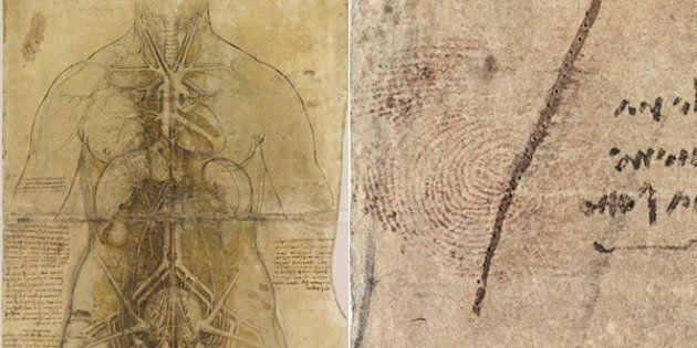 L'impronta di Leonardo Da Vinci in un'opera esposta a