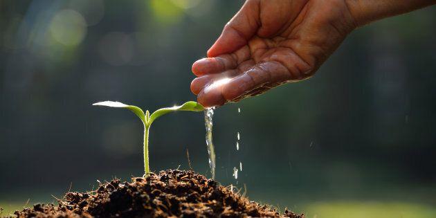 Un'agricoltura più sostenibile e rispettosa delle vocazioni