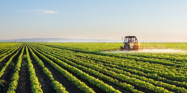 Pesticidi: ambiente e salute ancora a
