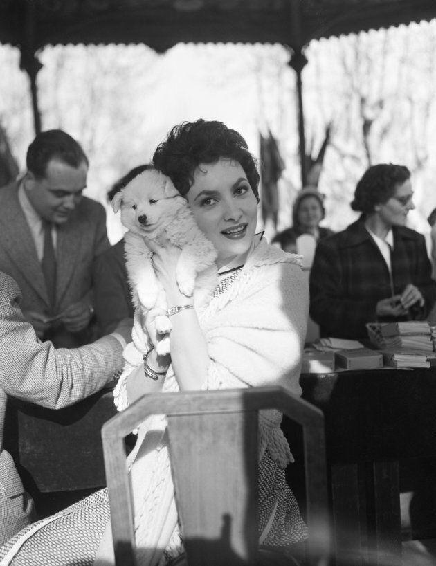 Gina Lollobrigida al festival di Cannes nel 1954 con un cucciolo, regalo di un