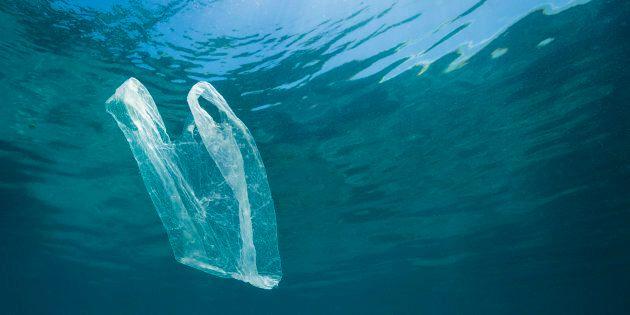 """Plastica in mare, la storia della busta più """"profonda"""" del"""