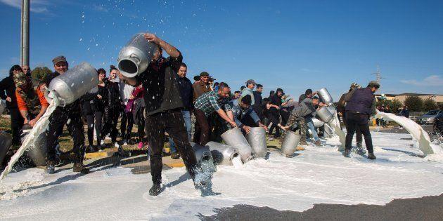 Protesta del latte: azienda ferma la produzione per