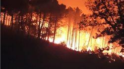 Incendio nel pisano, brucia il Monte Serra, fiamme verso Calci. Centinaia di sfollati: