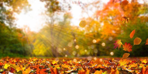 L'autunno fa sul serio (ma solo per