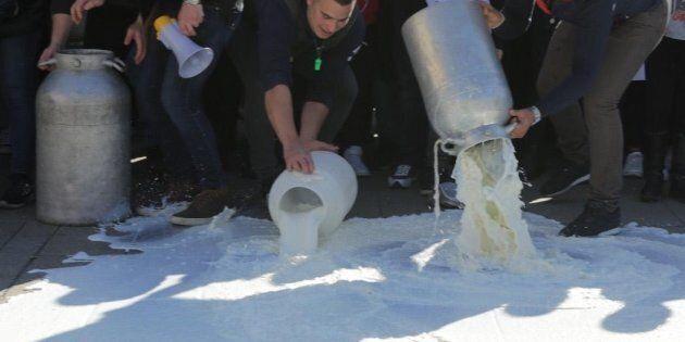 Matteo Salvini prende in mano il dossier latte: