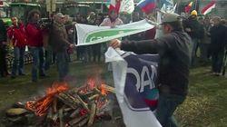 Non solo in Sardegna, le proteste degli allevatori per il prezzo del latte interessano tutta