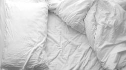 Il letto di uno scimpanzé potrebbe essere più pulito del