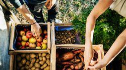 Una mozione per difendere il futuro dell'agricoltura, un referendum per proteggere le