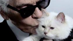 Karl Lagerfeld designò come ereditiera la sua gatta