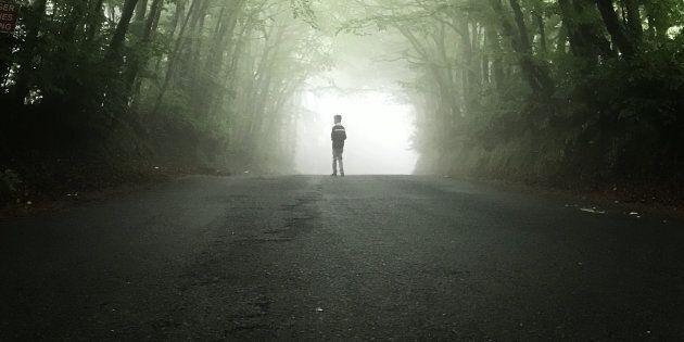 È stato ritrovato il bambino di 11 anni che in gita si era perso nel bosco di