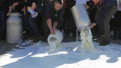 Pastori assaltano cisterna del latte in Sardegna nel giorno delle