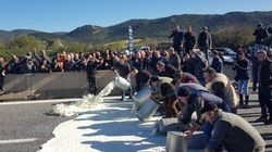 Protesta latte, assalto nel Sassarese: uomini mascherati danno alle fiamme