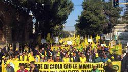 Agricoltori in piazza a Lecce. Ma il mondo agricolo piegato dalla Xylella si spacca in due