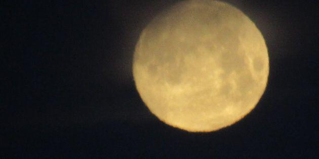 Questa è la notte della Luna: tutto il mondo con il naso