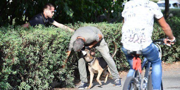 Violentata al Parco del Valentino a Torino, dopo una serata in discoteca: arrestato 30enne della