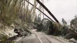 Case isolate, senza acqua e luce: la provincia di Belluno distrutta dal