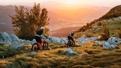 Sorprese di Slovenia: dal vino arancione all'olio d'oliva, invito nella Valle del Vipava per una primavera di sport e