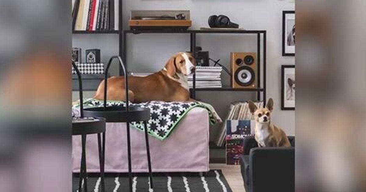 Lo spot Ikea è la migliore risposta al Congresso delle Famiglie | L'Huffington Post