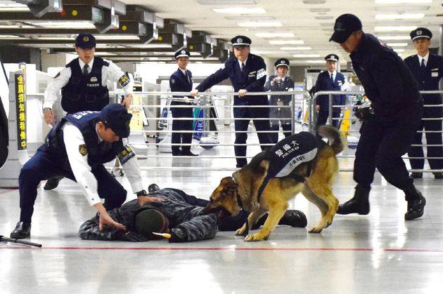 지난 4월 18일 나리타 국제공항에서 일본 경찰과 경찰견이 대테러 훈련을 하는