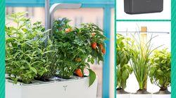 Quel potager d'intérieur choisir pour des herbes et légumes frais en
