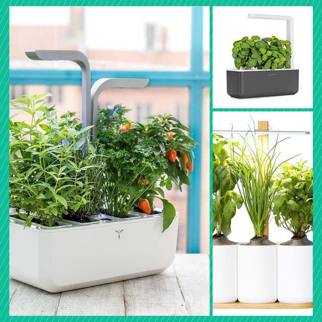 quel potager d 39 int rieur choisir pour des herbes et. Black Bedroom Furniture Sets. Home Design Ideas