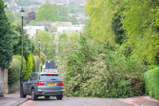 A fallen tree across a road in Bath, Somerset, on Saturday as storm Hannah sweeps across the west