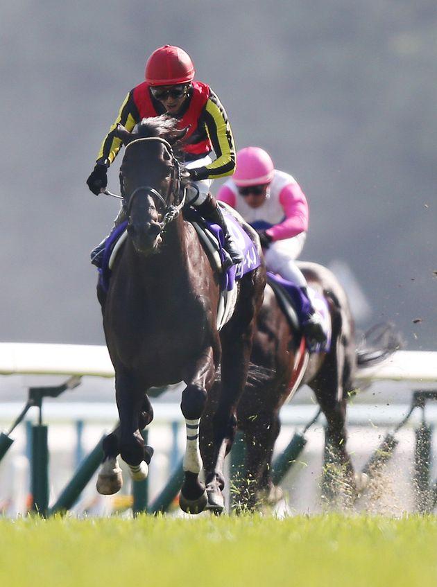 天皇賞・春で優勝したフェノーメノ。騎手は蛯名正義(2013年