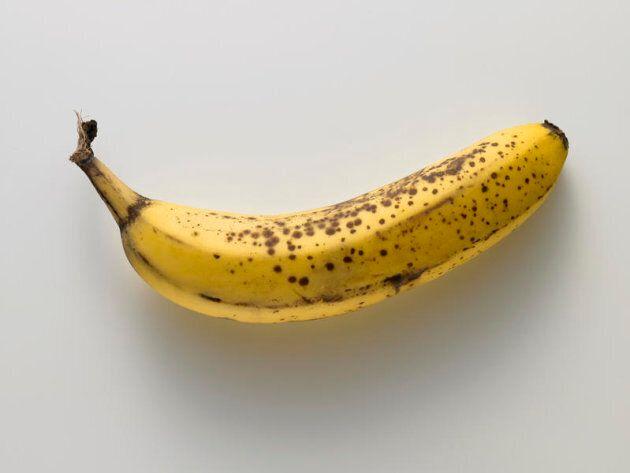 Banana still life Banana still