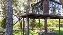 La casa sull'albero e altri 10 posti (pazzeschi) dove trascorrere una notte in Italia con