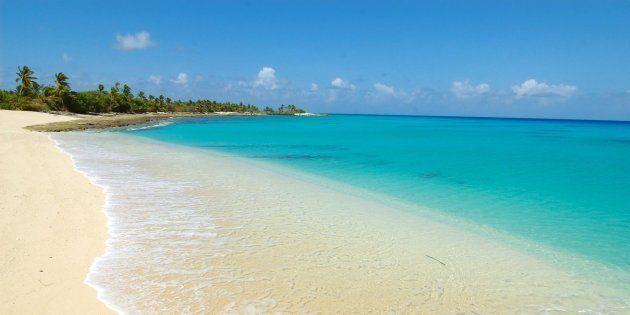 Sull'atollo Bikini tornano pesci e piante dopo l'esplosione atomica di 70 anni
