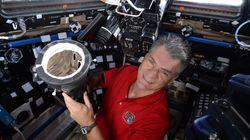 AstroPaolo fotografa l'eclissi totale dallo spazio e non ce n'è per