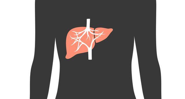 A형 간염의 주요 증상과