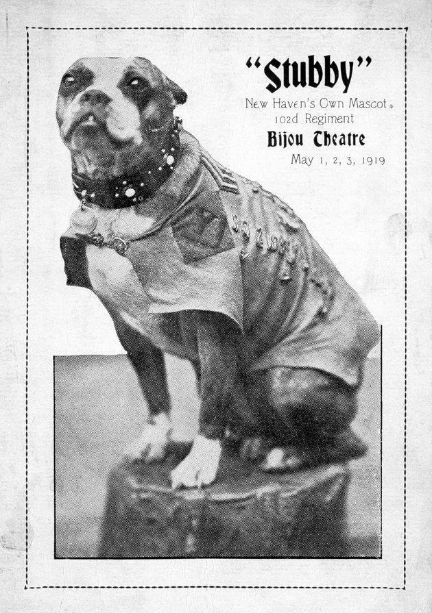 Stubby a même été la star d'un vaudeville à son retour du front, lors de trois...
