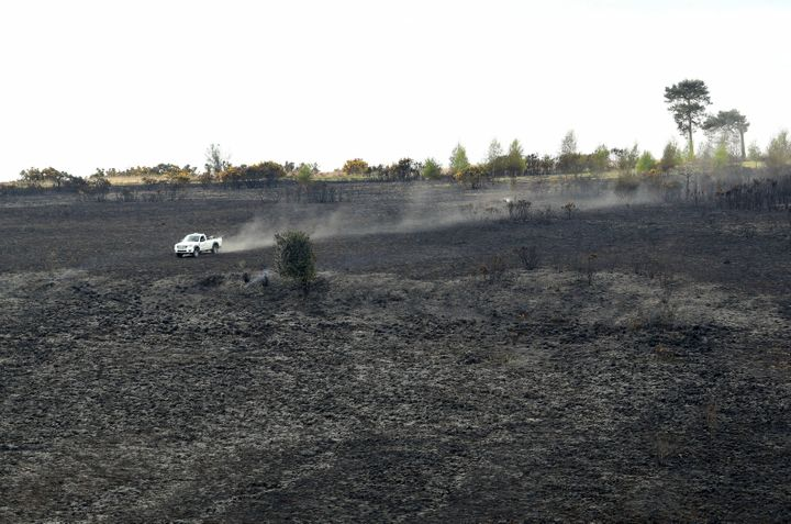 A forest ranger drives over the burned landscape of Ashdown Forest on April 29, 2019.