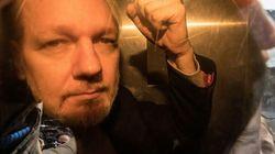 Julian Assange, condenado a 50 semanas de cárcel por un tribunal