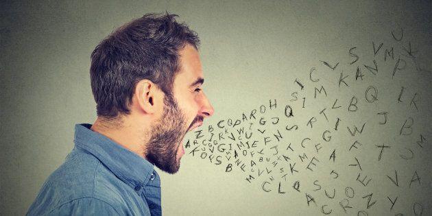 Lo squadrismo linguistico come elemento