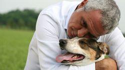 L'amore di un cane è per