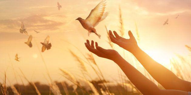 Pace, cercasi comunità
