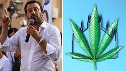 Salvini contro il Cannabis Expo: