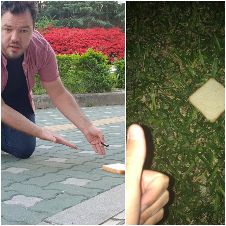한국과 우루과이에서 동시에 식빵으로 할 수 있는