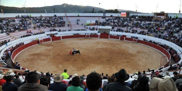 Spanish bullfighter Ivan Fandino performs during a bullfight at Cesar Rincon bullring in Duitama, department...