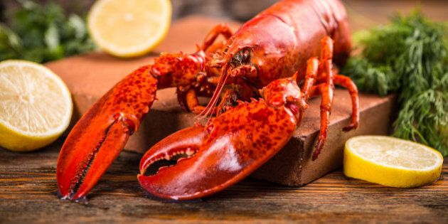 Freshly cooked lobsters served whole for