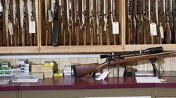 Registre des armes à feu: Québec aura les données