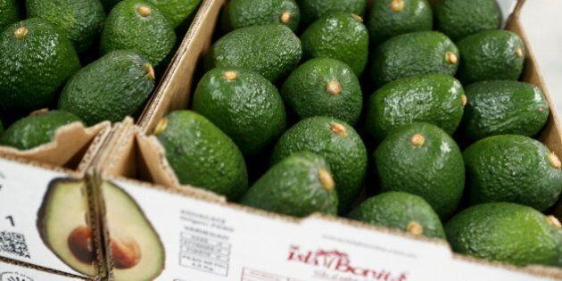 Boxes of avocados are seen at a packaging warehouse of Hoja Redonda plantation in Chincha, Peru, September...
