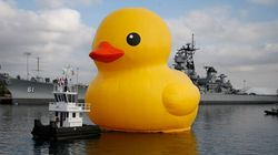 Un canard gonflable géant controversé en