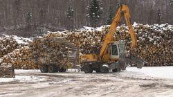 Bois d'œuvre: des maires québécois reviennent satisfaits