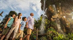 4 raisons de visiter «Pandora – The World of Avatar» cet
