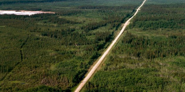 UNSPECIFIED - AUGUST 01: Aerial view of Highway 5, Wood Buffalo National Park (UNESCO World Heritage...